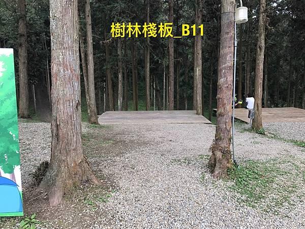 8ACE90A8-B4A4-48FB-87EB-8BDAF3C400F2L0001--IMG_6493.JPG.jpg