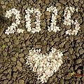 B57CEF20-E945-4A9B-8C29-7DF49C8E8CACL0001--IMG_1608.JPG.jpg