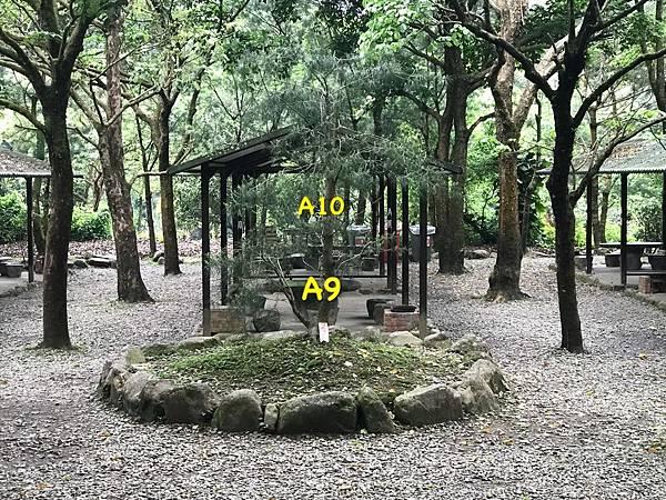 3904BD49-2140-46C3-8F4F-987C097C6AEDL0001--IMG_1577.JPG.jpg