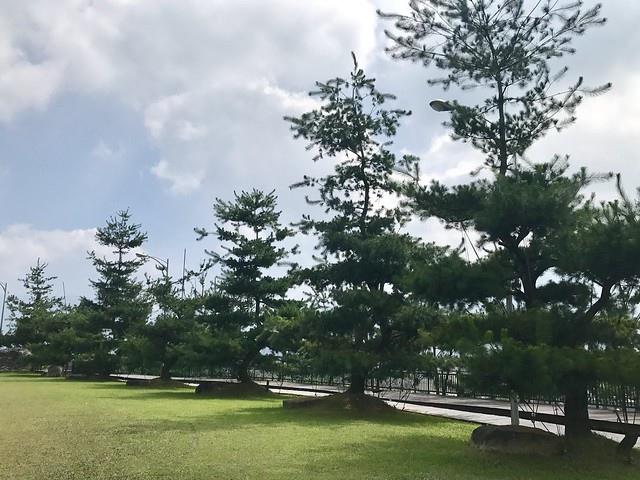 2019.09.13_HOHOCHA喝喝茶