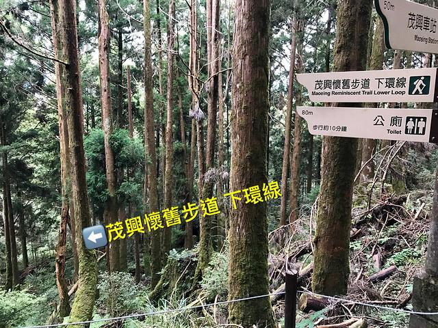 2019.08.17_太平山蹦蹦車茂興歩道