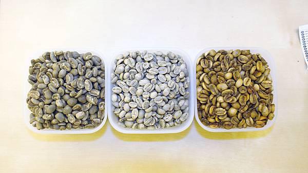 三種豆子比較
