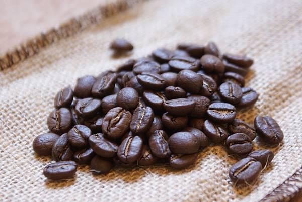 2012-03-29 烘焙,薩爾瓦多聖德雷沙莊園溫泉水洗豆