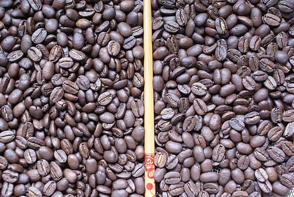 多明尼加:兩種手網烘焙結果比較