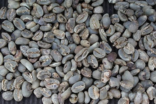 曼特寧 - 綜合瑕疵豆
