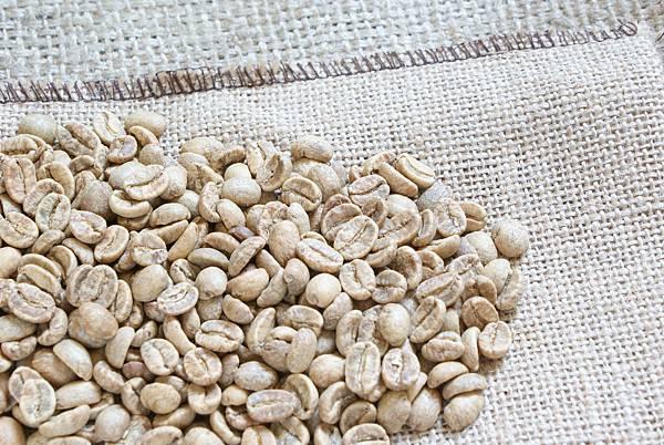 玻利維亞:永嘉仕有機咖啡