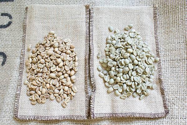 永嘉仕咖啡豆與一般咖啡豆色澤比較