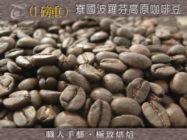 寮國波羅芬高原咖啡豆.jpg