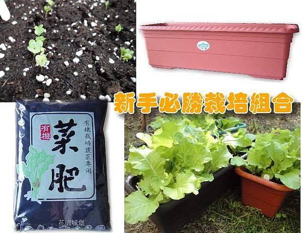 新手蔬菜栽培組合(2尺中型菜槽1個+蔬菜專用泥炭土15公升+菜肥1包+方形椰纖片9片)