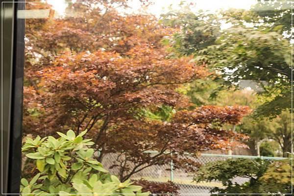 2013-10-07-10-21-57-東京遊-1