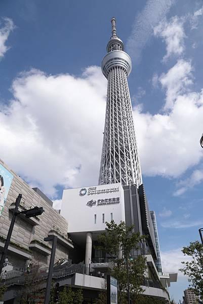 2013-10-09-12-34-25-東京遊.JPG