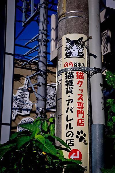 2013-10-12-09-25-45-東京遊-1.JPG