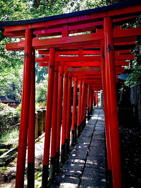 2013-10-12-10-12-11-東京遊-1.JPG