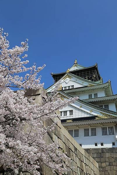 2014-04-03_09-03-54.JPG