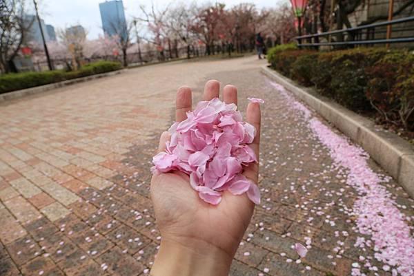 2014-04-04_09-10-00.JPG