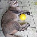 外婆給的玩具球