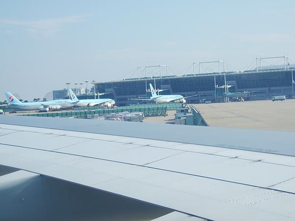 大韓航空的紫色披毯很棒,可惜沒得買。