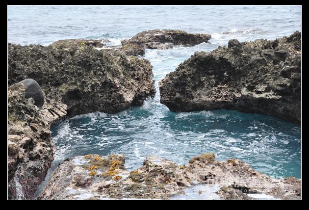 夏日海島-32-潔西-蘭嶼.jpg