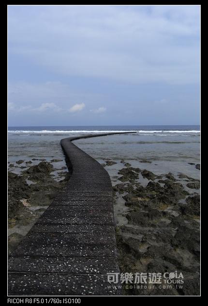 夏日海島-43-柚子-綠島.jpg
