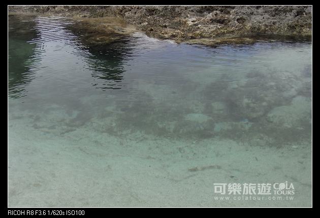 夏日海島-45-柚子-綠島.jpg