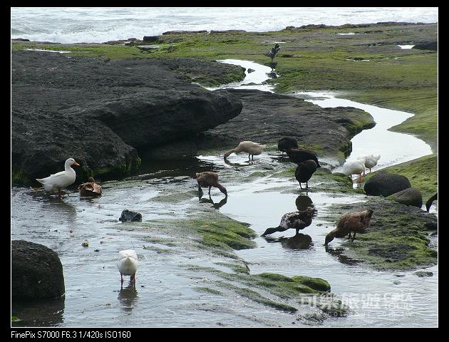 夏日海島-82-小乖-巴里島.jpg