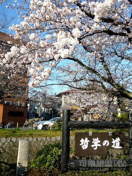 Cola_116_201204