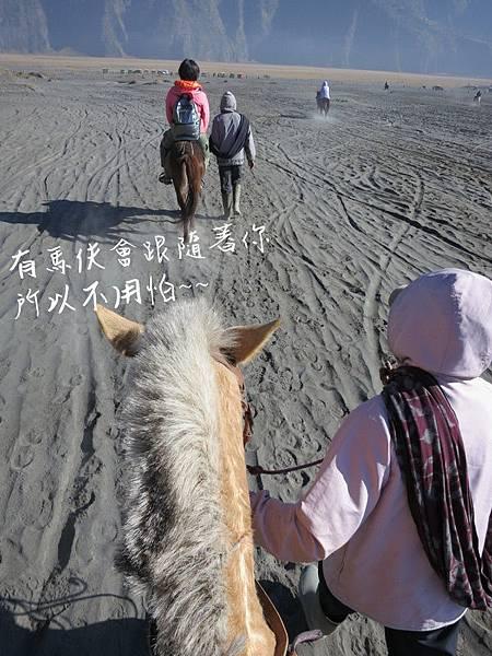 0209有馬伕牽