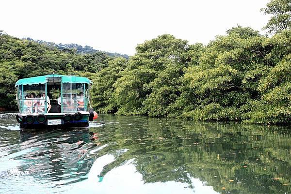 西表島_仲良川遊船