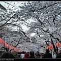 東京》放慢腳步賞櫻趣》克萊兒_FSCN6361.jpg