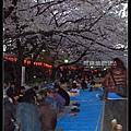 東京》放慢腳步賞櫻趣》克萊兒_DSCN6093.jpg