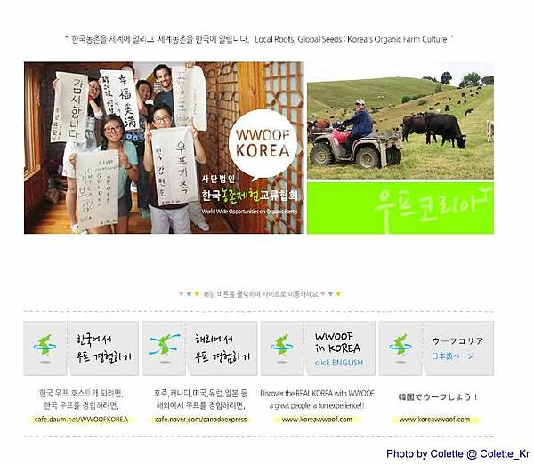 wwoof korea 01