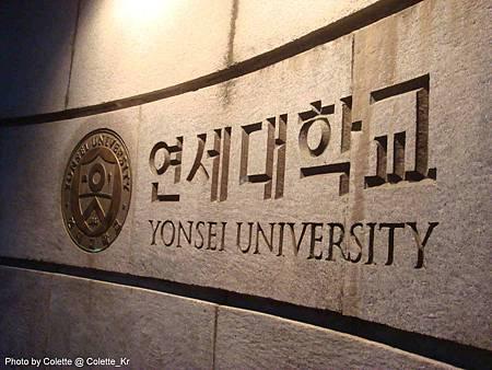 yonsei 09