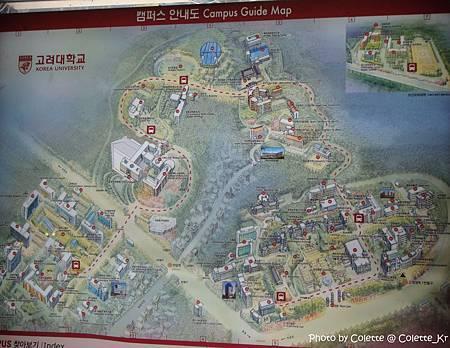 korea uni 11