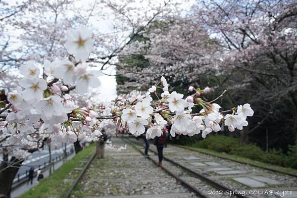 0407 蹴上鐵道-3