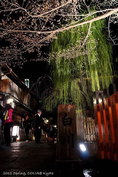 0401 祇園白川-3