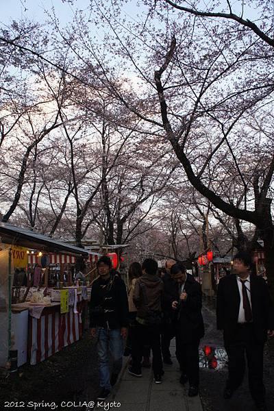 0406 平野神社-2
