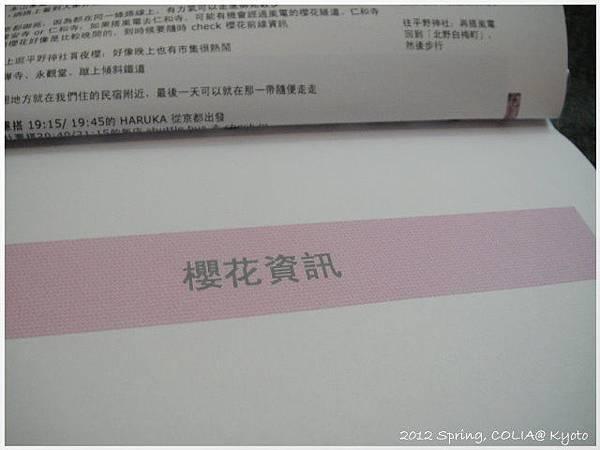 DSC07311