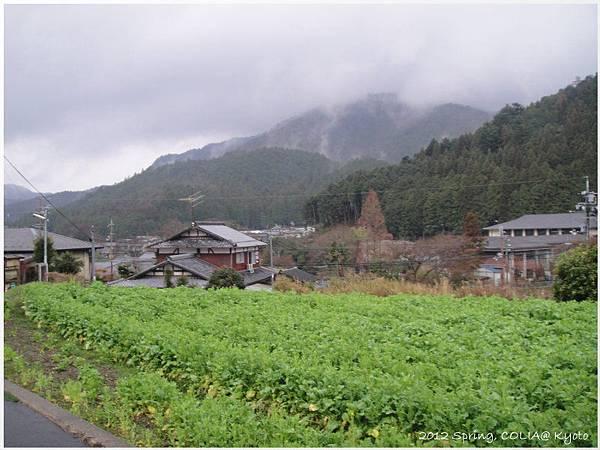 ohara view 03