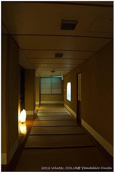 room floor 05