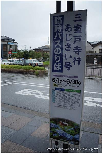 D7_14.JPG