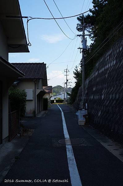 D2_19.JPG