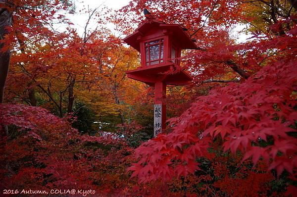 02-鍬山神社 01.JPG