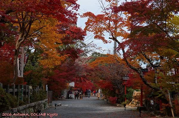 02-鍬山神社 02.JPG