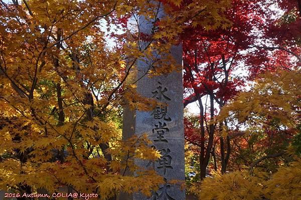 03-永觀堂(日)-01.JPG