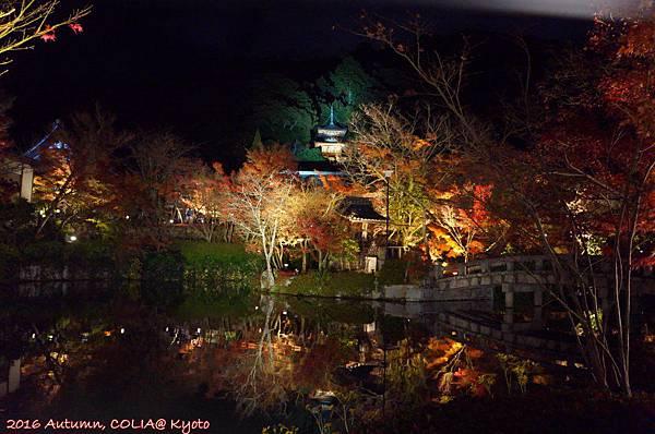 03-永觀堂(夜)-13.JPG