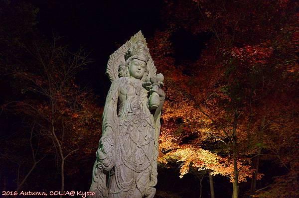 03-永觀堂(夜)-11.JPG