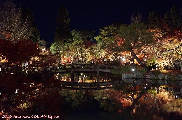 03-永觀堂(夜)-12.JPG