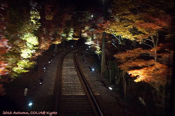 04-叡電紅葉隧道 02.JPG