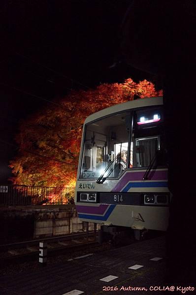 04-叡電紅葉隧道 05.JPG