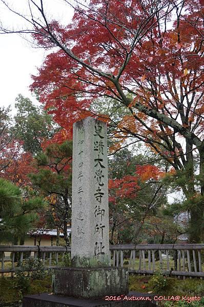 06-大覺寺 01.JPG